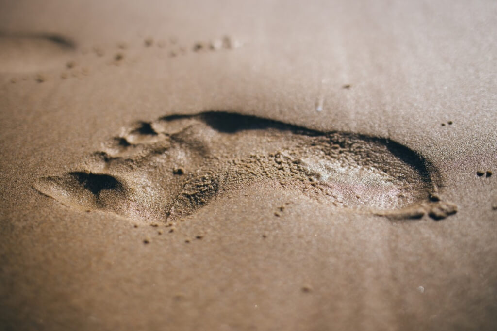 Your Photographic Footprint